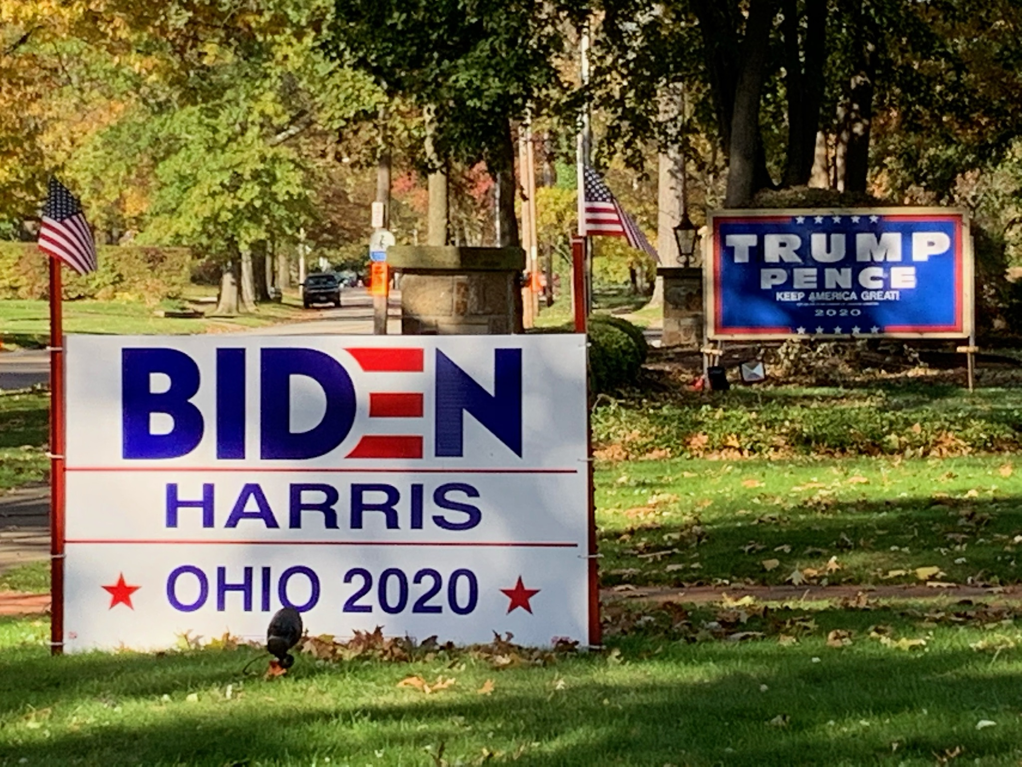 Campaign lawn signs, Cleveland, 11/3/20
