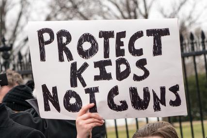 Gunreform1.PNG