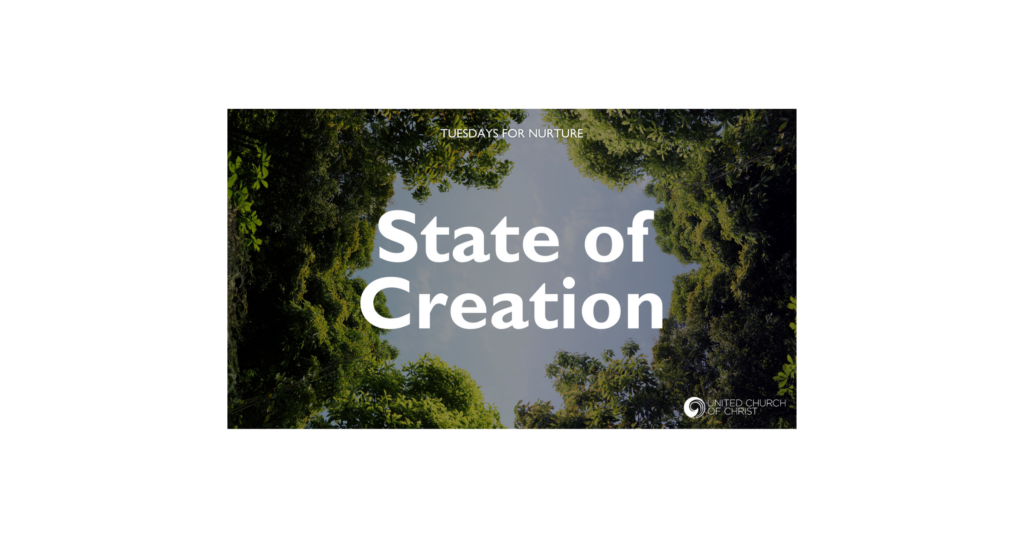 "Logo for ""The State of Creation"" webinar, 3/2/21"
