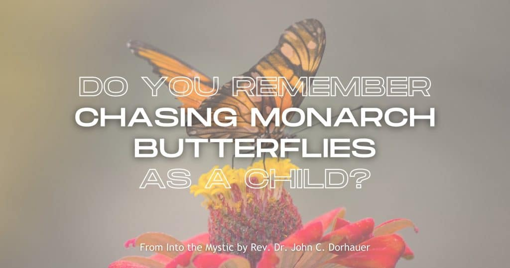 """Picture of a monarch butterfly on a flower with the words: """"Do you remember chasing monarch butterflies as a child?"""" From Into the Mystic by Rev. Dr. John C. Dorhauer"""