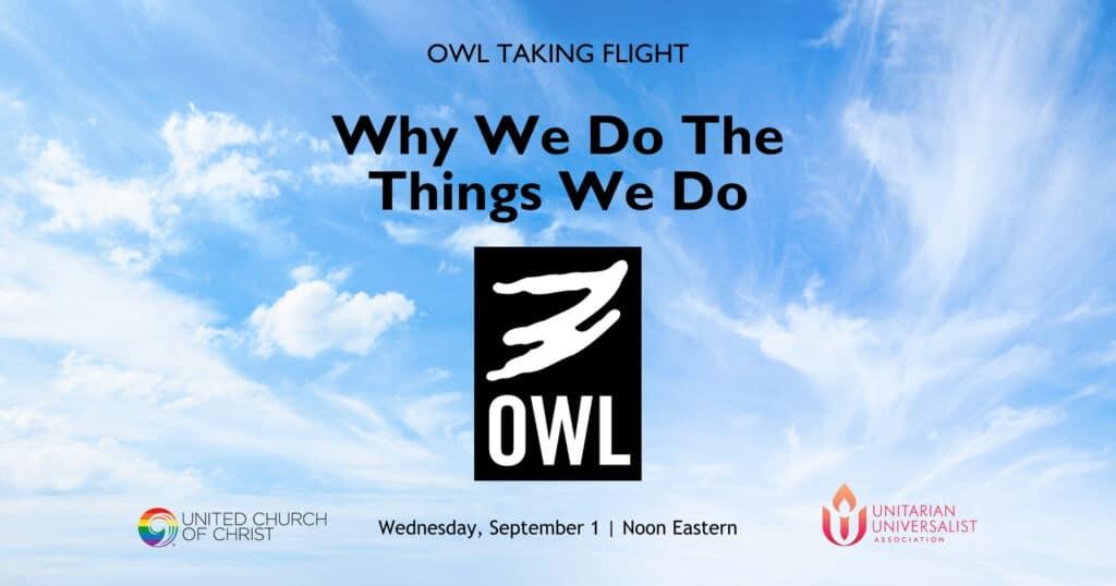 OWL-Taking-Flight-September-2021