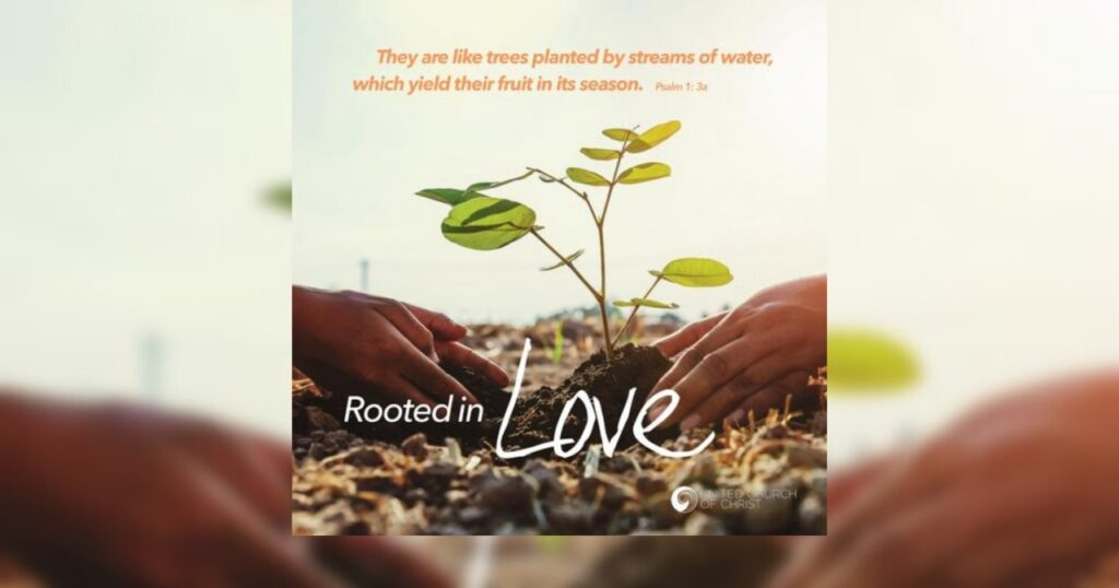 Pastors appreciate stewardship resources; 'Rooted in Love' now available for fall campaigns