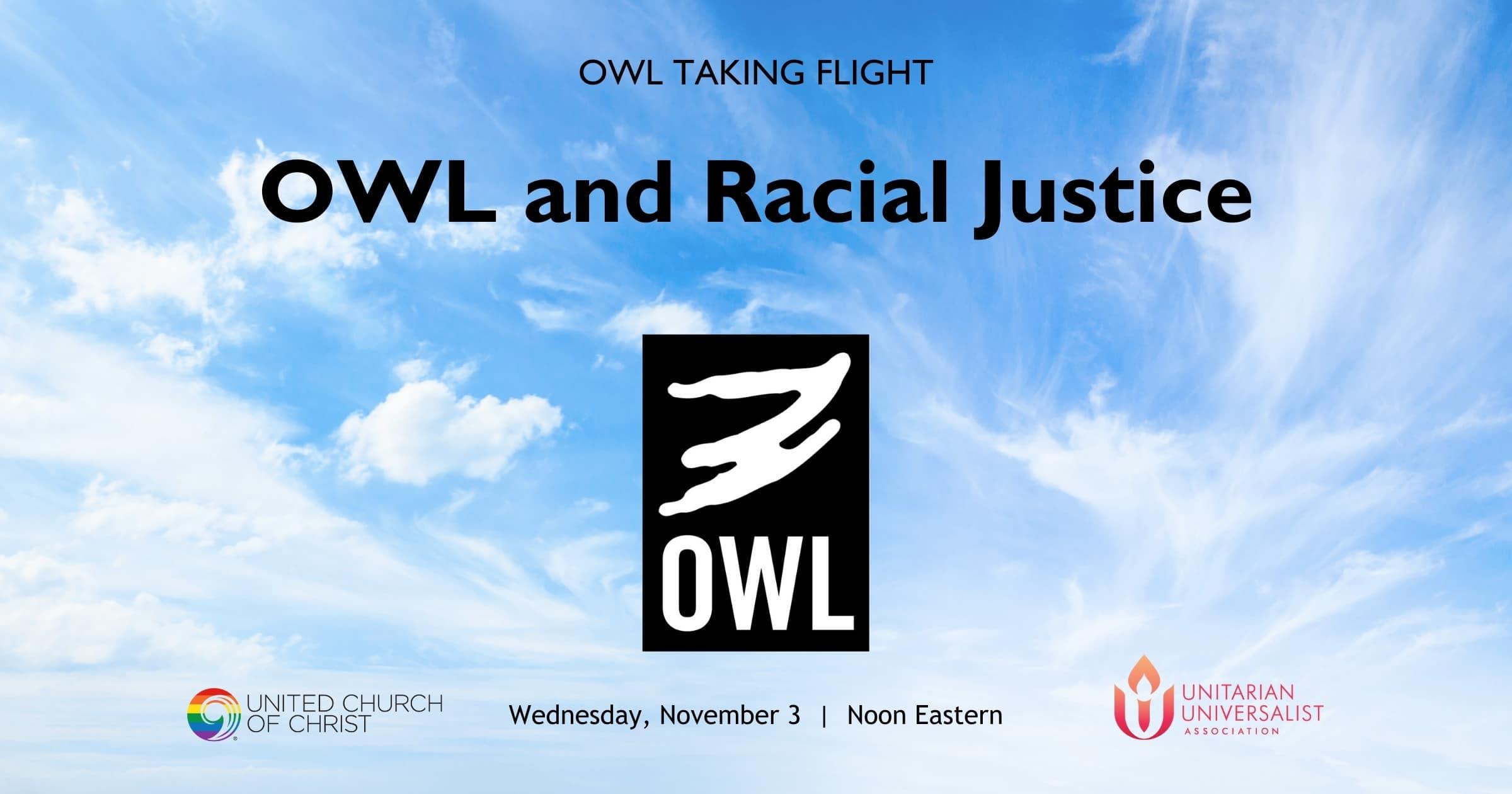 OWL-Taking-Flight-November-2021