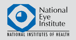 02National_Eye_Institute.png